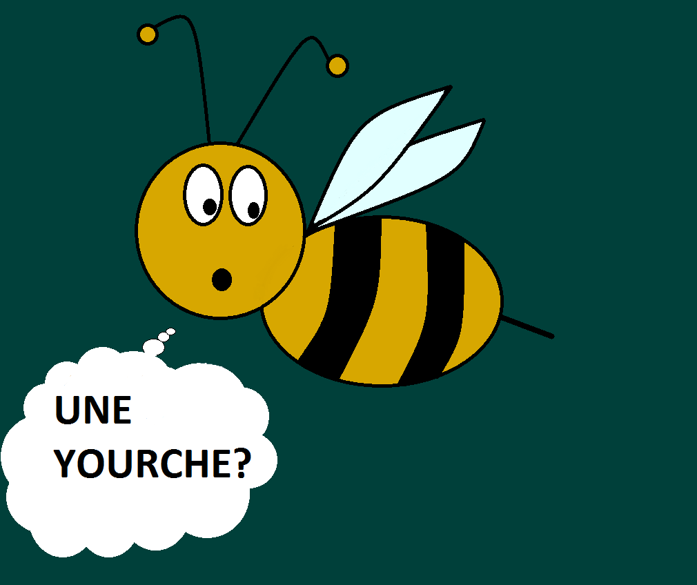 yourte ruche